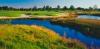golf_017