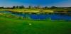 golf_020