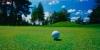golf_033
