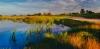 golf_036