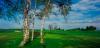 golf_047