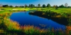golf_050