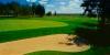 golf_065