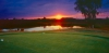 golf_066