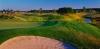 golf_083