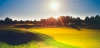 golf_095