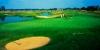 golf_104