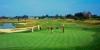 golf_106
