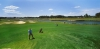 golf_117