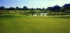 golf_127
