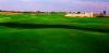 golf_144